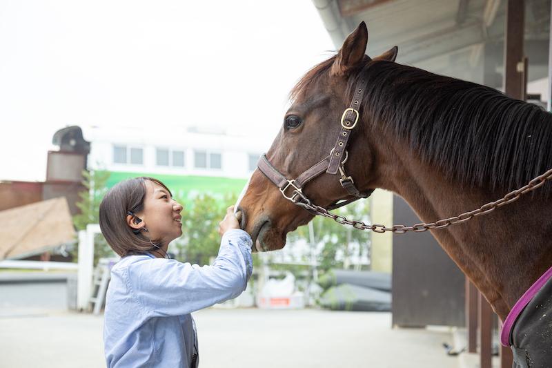 乗馬を始めたい方